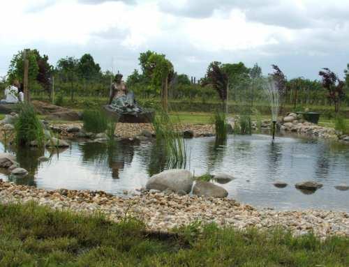 Kerti tó tavaszi karbantartása