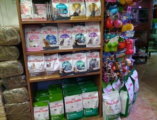 Royal Canin termékekkel bővült webshopunk